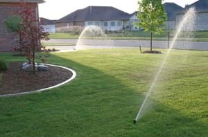 A new sprinkler system installed last summer by Midwest Sprinkler