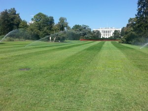 Rainbird Products on White House lawn